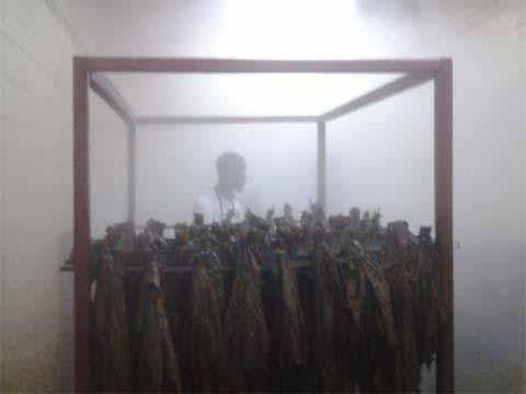 tabakindustrie 3